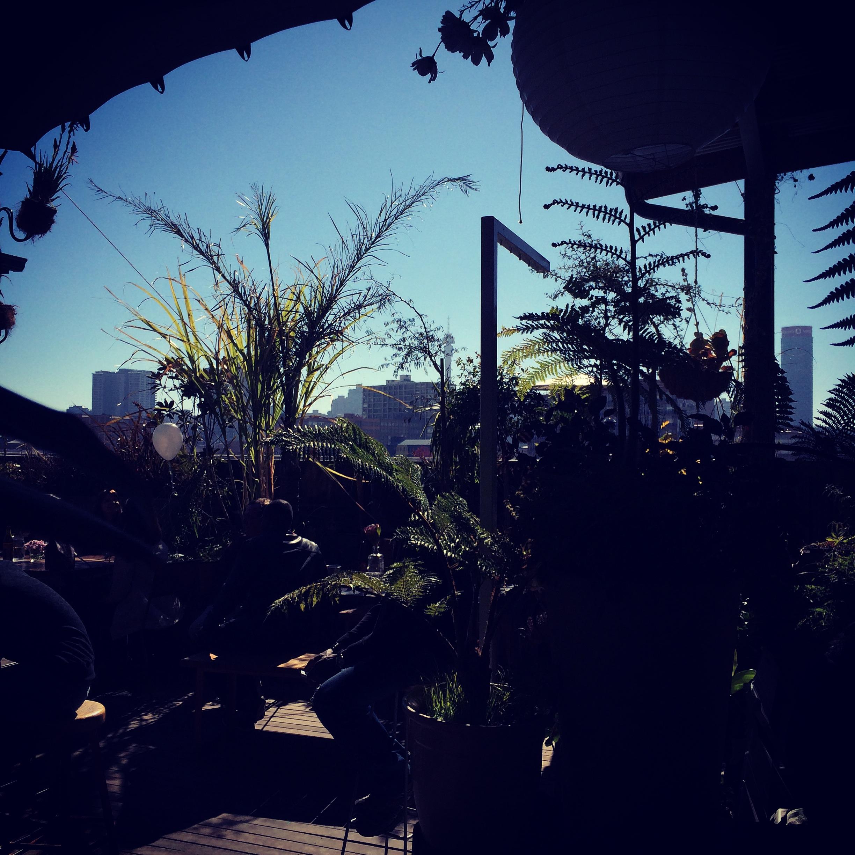 6 garden